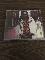 Lenny Kravitz Are gonna go my way CD