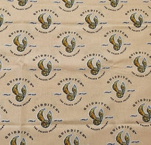 Harry Potter Nursery Cotton Print - Quidditch on Peach
