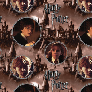 Harry Potter Digital Print Cotton Fabric - Harry, Hermione & Ron