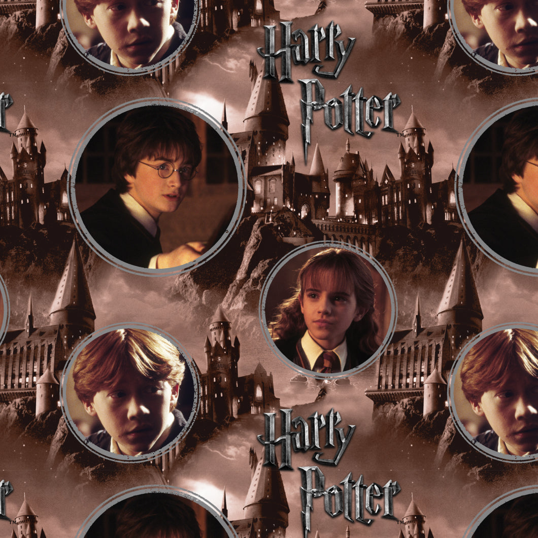 Harry Potter Digital Print Cotton Fabric - Harry, Hermione & Ron - per 1/4m