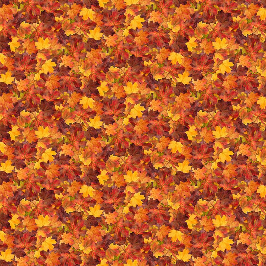 The View From Here Cotton Fabric - Autumn Warmth - Autumn Leaves