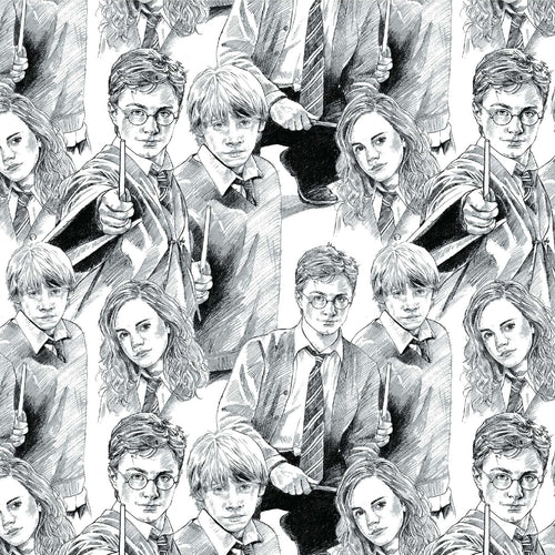 Harry Potter Cotton Fabric - Sketched Trio