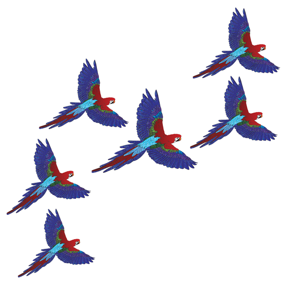 Flock of Parrots Wall Stickers