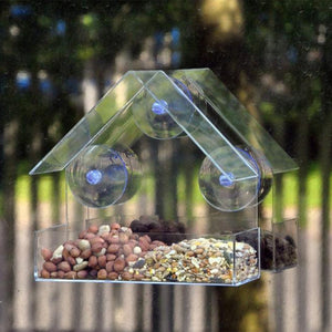 Clear House Wild Bird Feeder