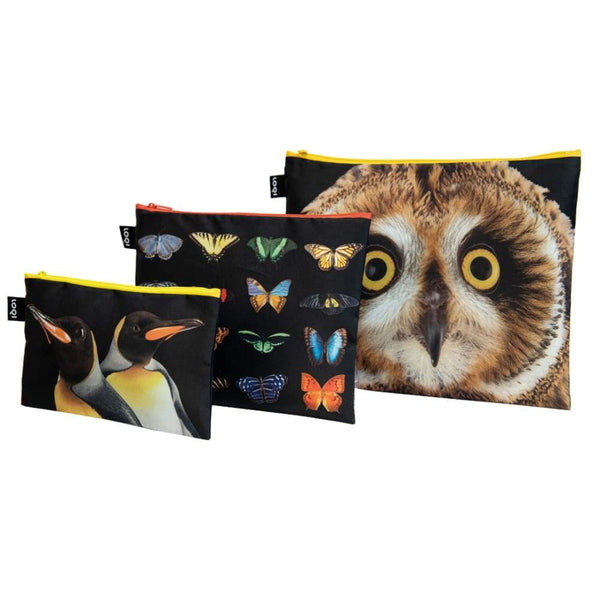 Loqi Zip Pocket (Set Of 3) National Geographic Collection - Owl Butterflies Penguins Loqi Pouches