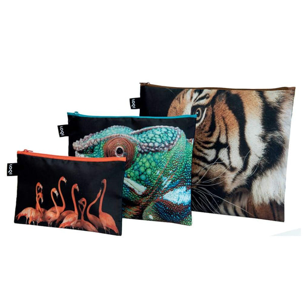 Loqi Zip Pocket (Set Of 3) National Geographic Collection - Tiger Chameleon Flamingos Loqi Pouches