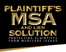 Plaintiff's MSA and Lien Solution logo