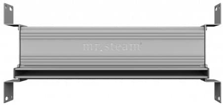 Linear 27.5 in. Steam Head