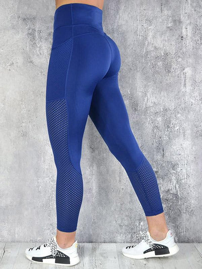 Perforated Mesh Sports Leggings