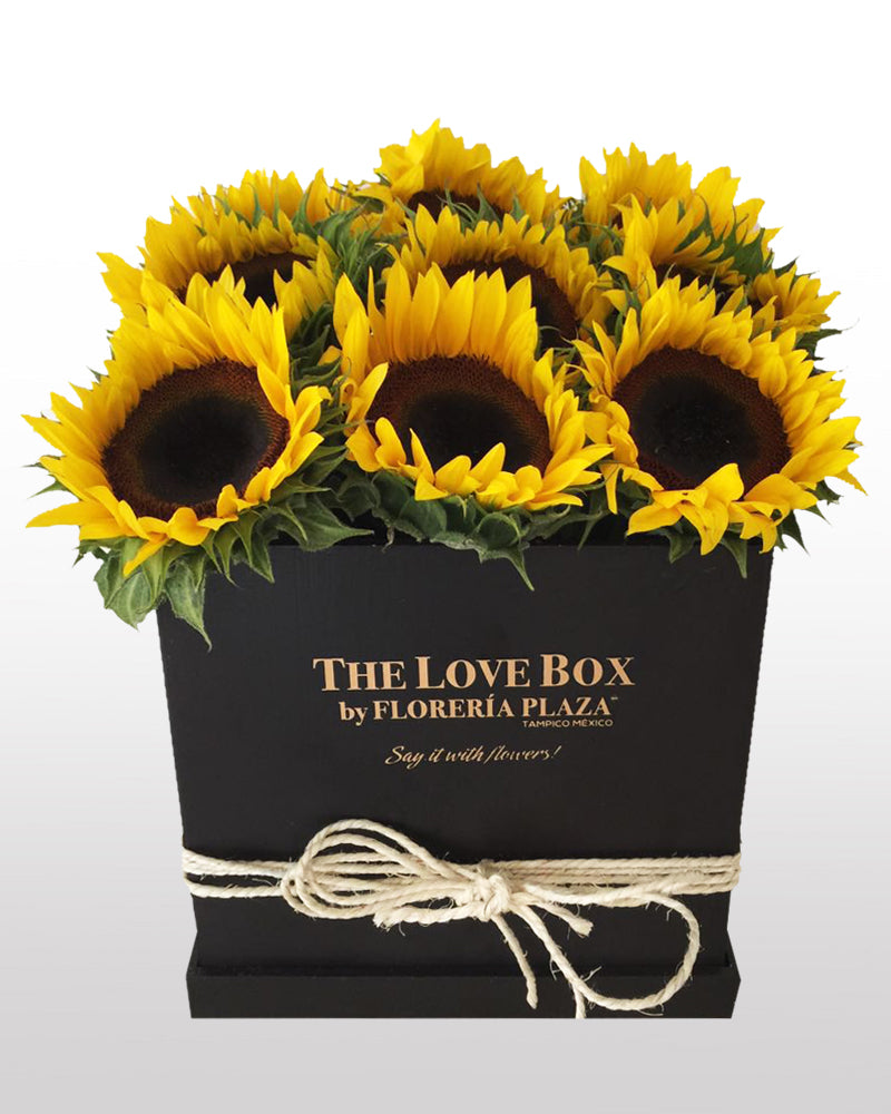 THE LOVE BOX GIRASOLES