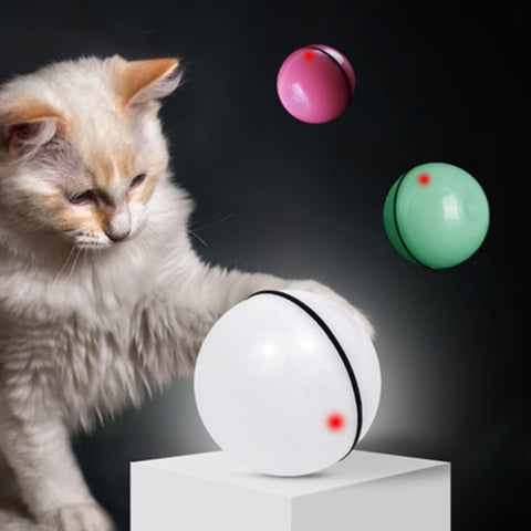 Rolling Ball - Smart Interactive Pet Ball - Common Bunny
