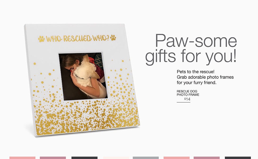 Paw-some gifts for you! Pets to the rescue! Grab adorable photo frames for your furry friend.