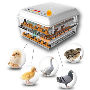 220V/12V Eggs Incubator Brooder Bird Quail Chick Hatchery Incubator Poultry Hatcher Turner Automatic Farm Incubation Tools