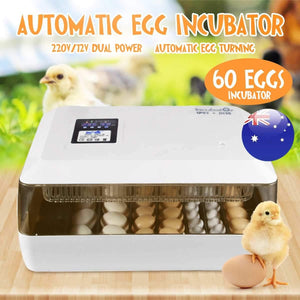 60 Eggs Incubator Hatcher Brooder Bird Quail Incubator Chick Hatchery Incubator Poultry Hatcher Turner Automatic Farm Tools
