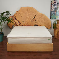 "Certified Organic 8"" Eco-Luxury Mattress With Eco-Wool & Cotton Case"