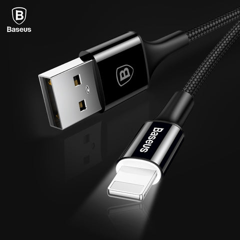 IsThy - 25cm LED Lighting Fast Charger Cable For iPhones