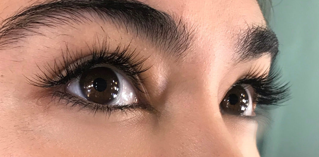 Eyelash Extensions Training with Free Eyebrow Extension demo