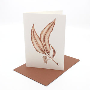 Feather and Leaf cards Cards & Tags Tim de Groot Together