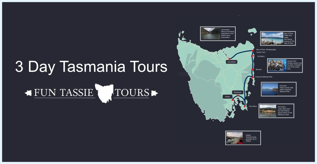 Tasmania Tours 3 Days | 5 Star Reviews | Fun Tassie Tours