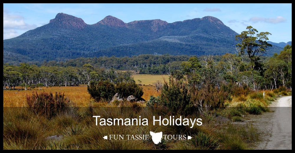 Tasmania Holidays | Tour Tasmania | Fun Tassie Tours | 5 Star Reviews