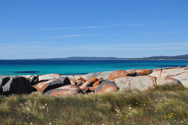 Bay of Fires tour