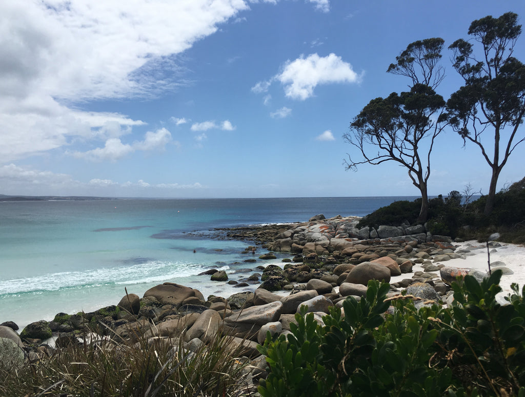 Bay Of Fires - Tours Tasmania