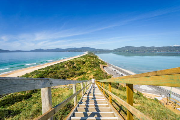 Bruny Island Tours