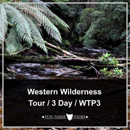 Tours Tasmania 3 Days