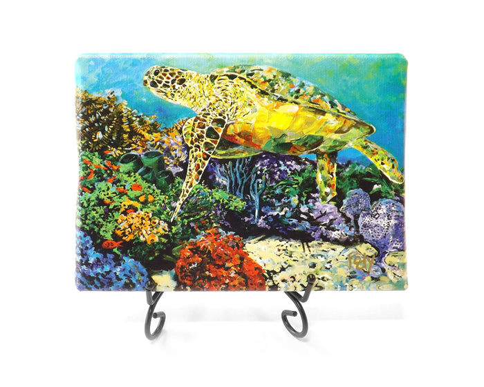 Doreen's Turtle Mini Giclee by Kim Rody