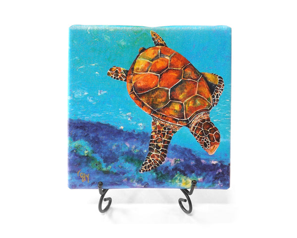 Freestyle Turtle Mini Giclee by Kim Rody