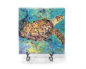 Kris Turtle Mini Giclee by Kim Rody