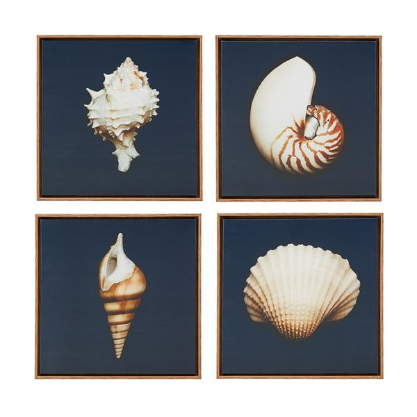 Set of 4 Shell Canvas Prints