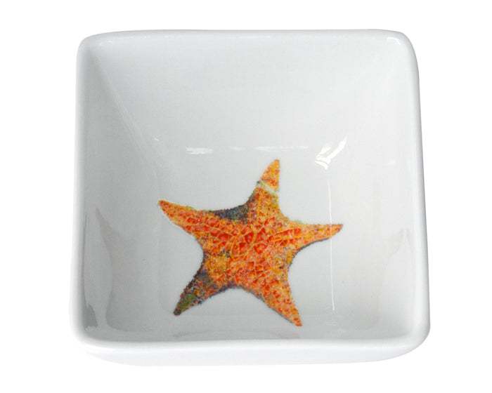 A Star is Born Dinnerware by Kim Rody
