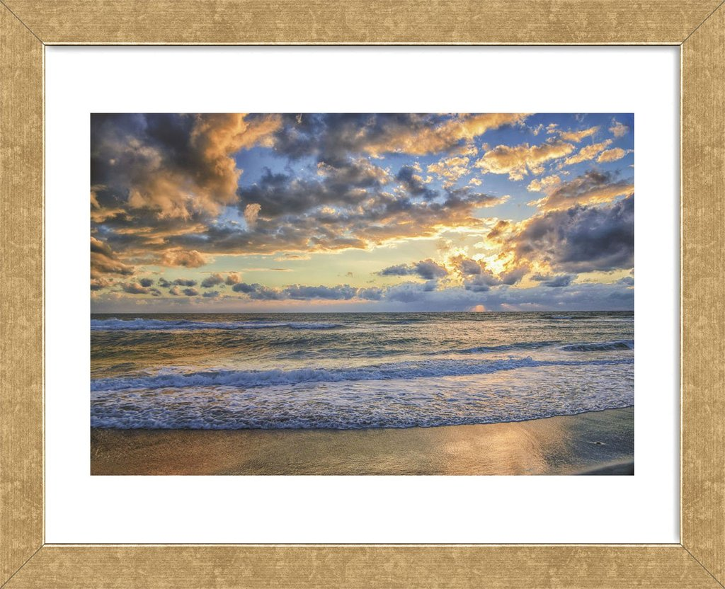 Last Light Framed Art Print -  Artist Mary Lou Johnson
