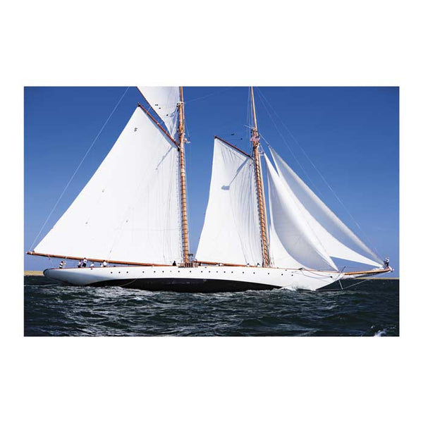 Sailing 42600 Canvas Art Print - Artist  Cory Silken