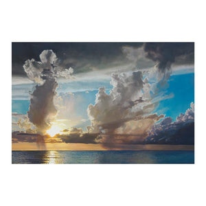 Swan Song Canvas Art Print - Artist David Jenks