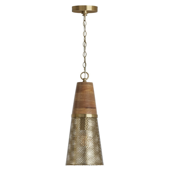 Capital Lighting One Light Pendant 333911DG-693 Coastal Lighting