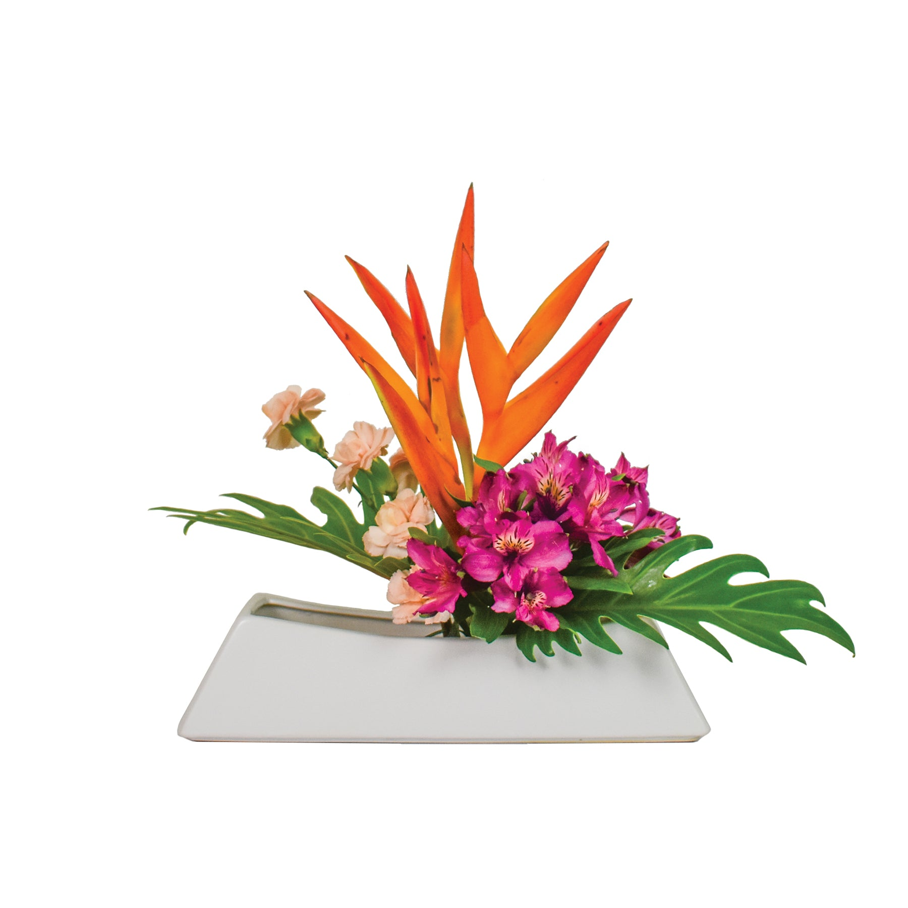 July Arrangement: Tropical Heatwave