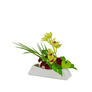 August Arrangement: Tropical Paradise