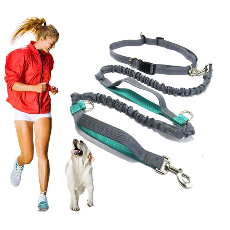 Pet product Dog Leash Running  belt Jogging Sport  Adjustable Nylon Dog rope With Reflective Strip Pet Accessories Hands Free