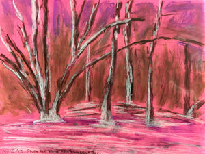 Study for Winter Red- Sunnybrook Park