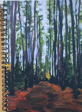 Tremblant Forest Path Sketchbook
