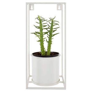 Wall Planter w/Frame