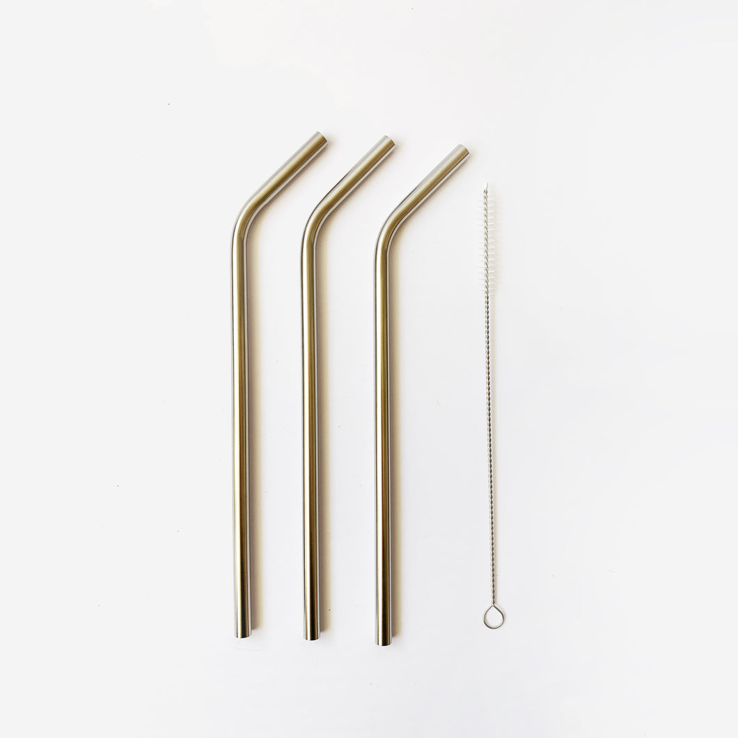 Stainless Steel Straws + Brush 3pc