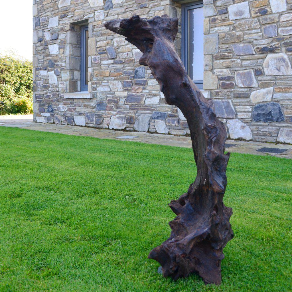Large Bog Oak Sculpture subtly resembling a rabbit