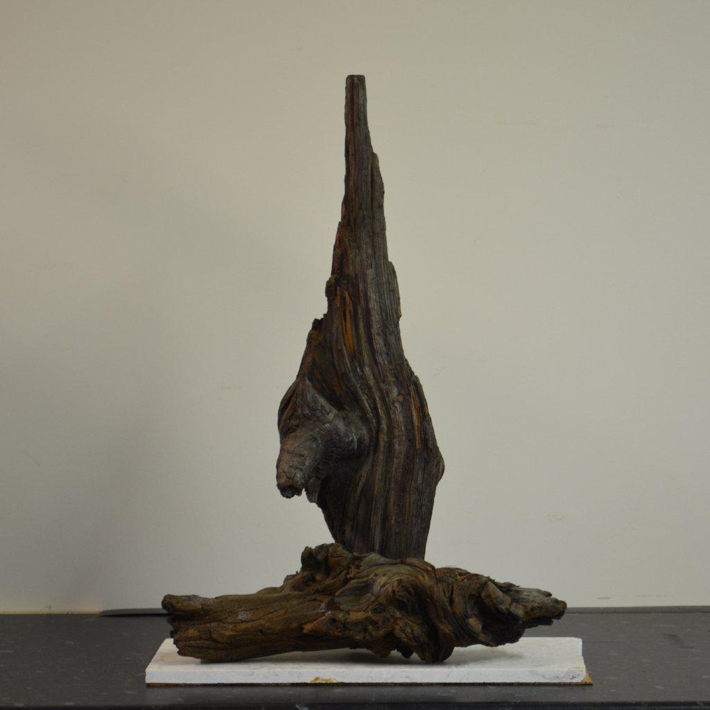 Upstart is a combination of two pieces of Bog Oak featuring the root of a branch extruding from a piece of tree truck
