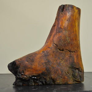 Clog - Bog Oak Sculpture is made from deal wood and is naturally shaped like a boot.