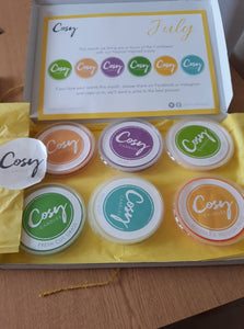 New scented soy wax melts for July!