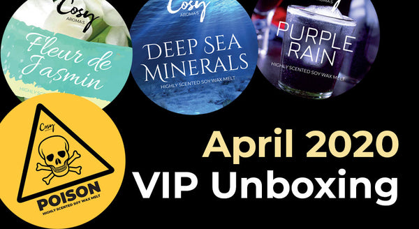 April 2020 VIP Subscription Unboxing