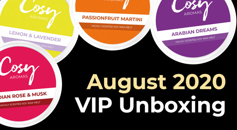 August 2020 VIP Subscription Unboxing